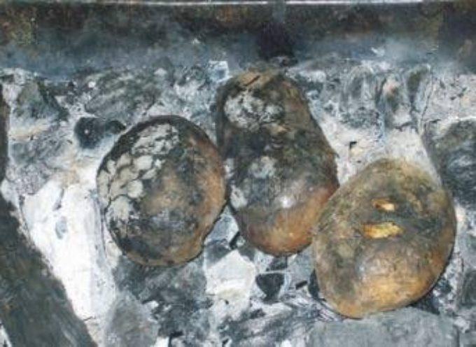 Il cibo frugale: le patate nella cenere…