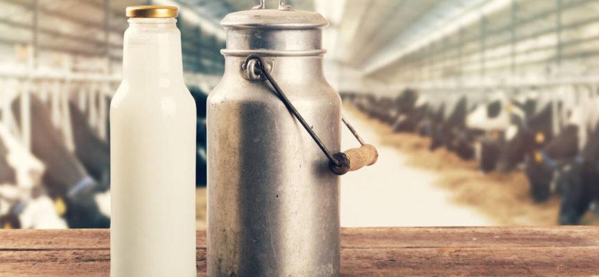 Covid, dalla Regione 879mila euro per il settore lattiero-caseario.