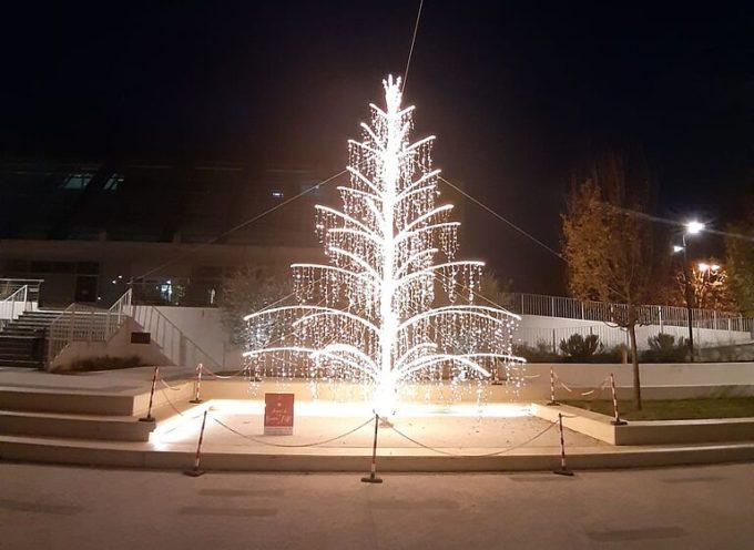 Il Comune ringrazia le aziende che hanno contribuito a realizzare l'albero di Natale in piazza Aldo Moro