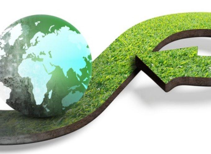 plessi sempre più green, via libera ad efficientamento energetico Mutti, Forli, F.lli Grimm e Ricci