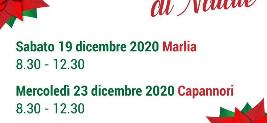 MERCATI CONTADINI DI NATALE A MARLIA E CAPANNORI.