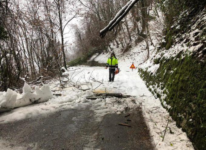 GARFAGNANA – al lavoro per ripristinare la viabilità su varie strade Comunali a seguito della cadute di piante per la neve