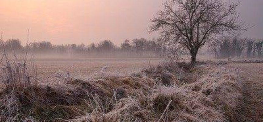 Brina e galaverna: i fenomeni del freddo.