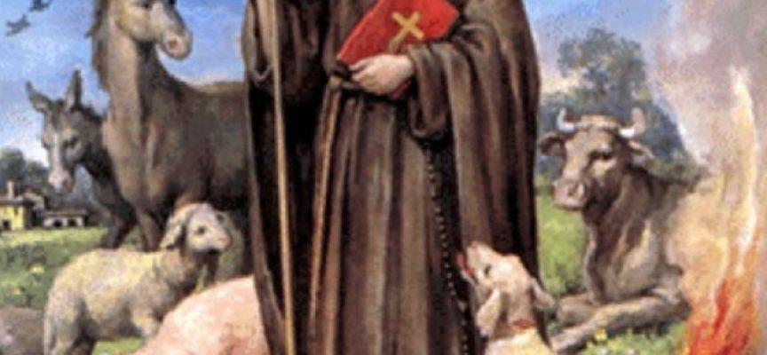 Il Santo del giorno, 17 Gennaio: S. Antonio Abate, protettore degli animali