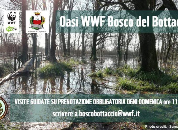 Bosco del Bottaccio: calendario delle visite guidate