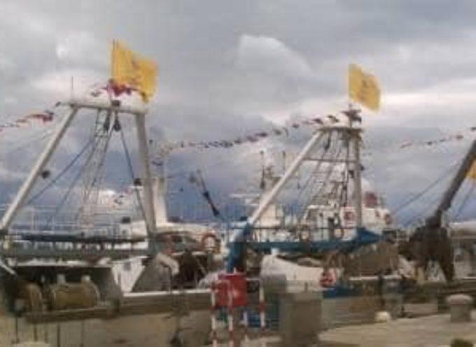 PESCA: COLDIRETTI TOSCANA, CON USCITE RIDOTTE A 1/3 ADDIO PESCE TOSCANO;