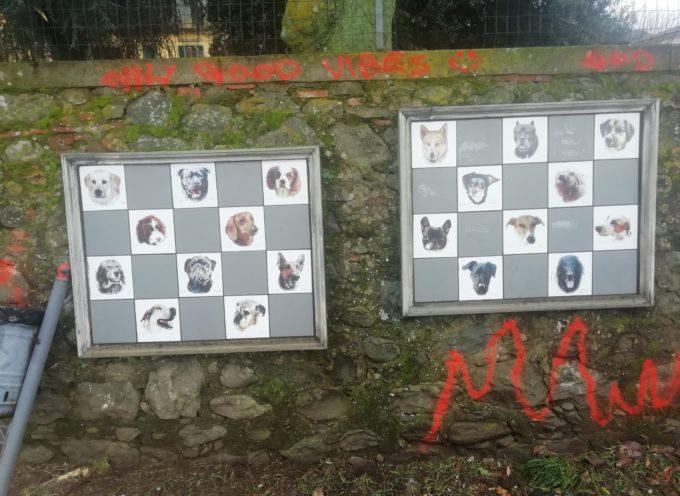 Spray vandalico al muro degli animali a Pescia