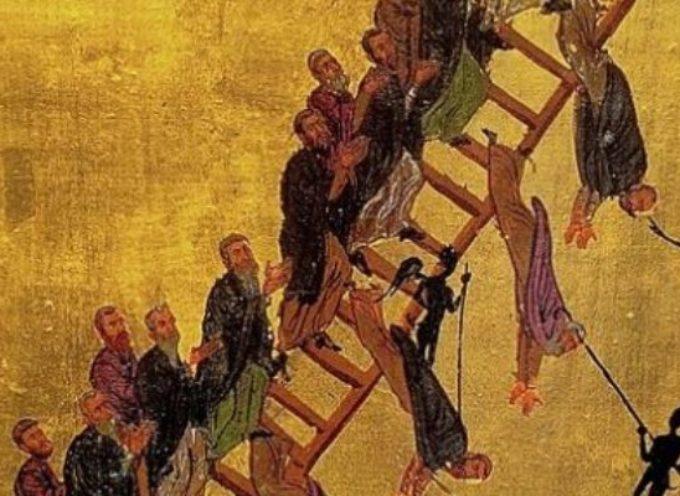 Il Santo del giorno, 20 Febbraio: Madonna della Scala