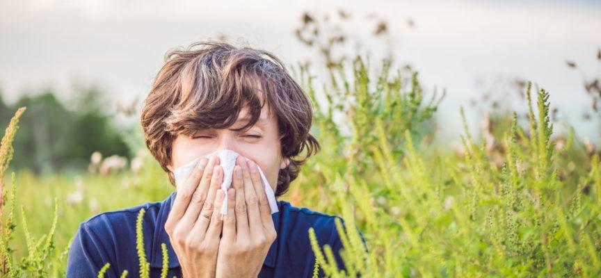 La stagione delle allergie ai pollini inizia sempre prima (e andrà anche peggio)
