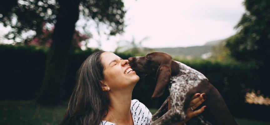 IN-HABIT: AL VIA IL PERCORSO DI PARTECIPAZIONE PER COSTRUIRE UNA CITTÀ A MISURA DI ANIMALI