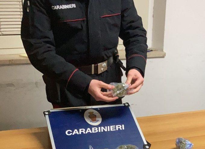 Pietrasanta – Sorpreso con dosi di hashish e marijuana, arrestato un uomo dai Carabinieri