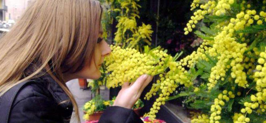 Festa della Donna – '8 Marzo e dintorni', tutti gli eventi a Lucca, nella Piana e in Media Valle e Garfagnana