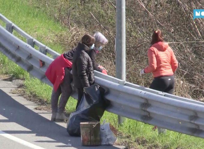 Volontari al lavoro per raccogliere i rifiuti lungo la Fondovalle