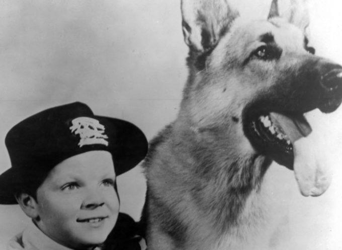Addio a Rusty, il bambino amico di Rin Tin Tin