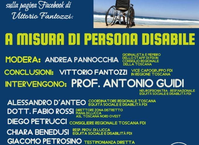 "Webinar di Fratelli d'Italia, ""A misura di persona disabile"""