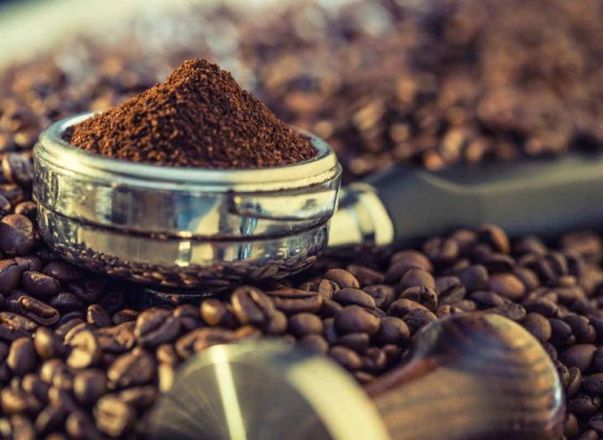 Il sapore del caffè potrebbe non essere più lo stesso a causa dei cambiamenti climatici