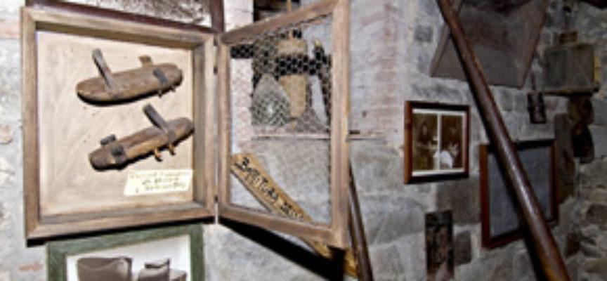 La Storia del Museo del castagno di Colognora