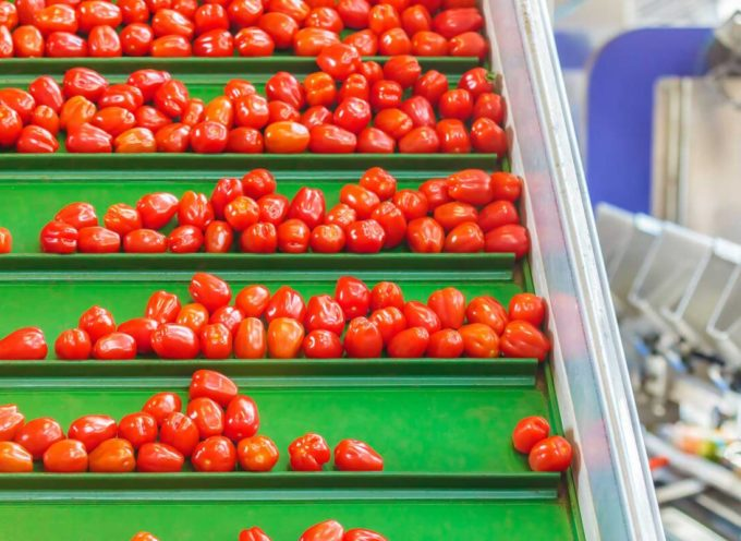 «Bene riapertura stabilimento: garantire proseguo campagna 2021 e tutelare le migliaia di aziende agricole conferitrici»