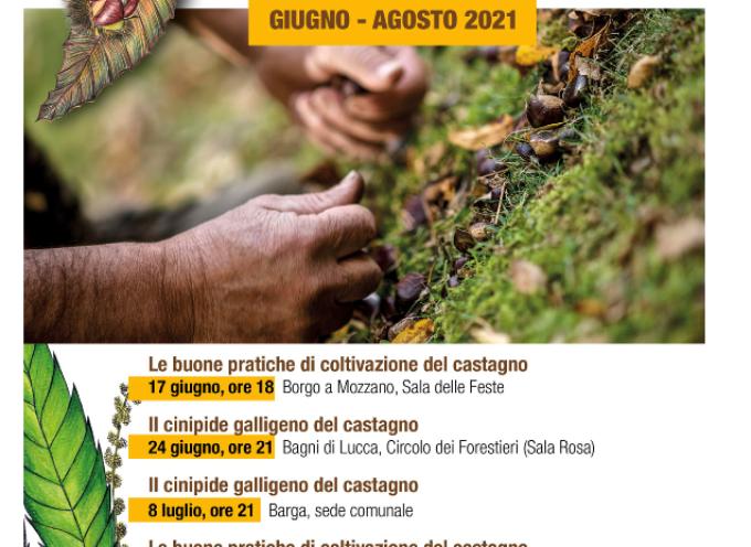 Al via il corso formativo sulla castanicoltura! Primo appuntamento a Borgo a Mozzano!