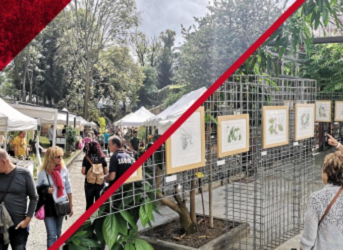 Orizzonte Murabilia 2021 – Incontri on-line per imparare i trucchi di orto, frutteto e giardino