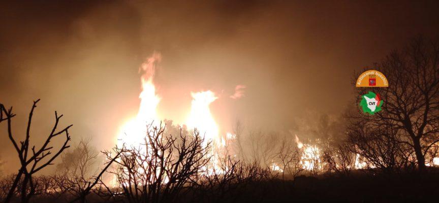 Incendio a Capalbio riattivato dal vento, in azione tre elicotteri e un Canadair
