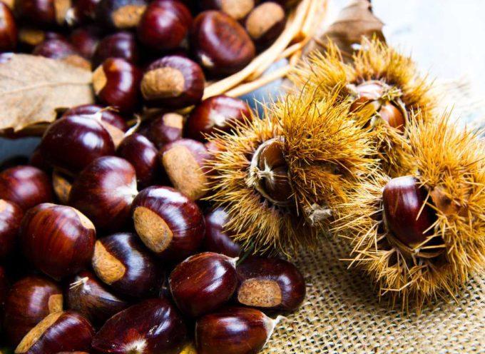 La Festa della Castagna di Azzano,  farà il bis domenica 24 ottobre.
