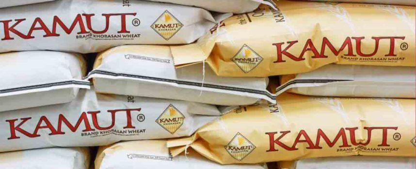 Grano khorasan Kamut®: non è un cereale ma un marchio registrato