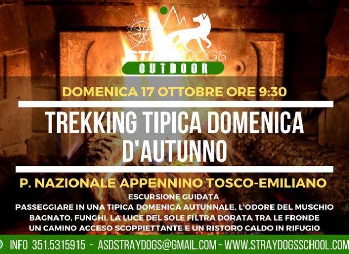 Trekking: TIPICA DOMENICA D'AUTUNNO