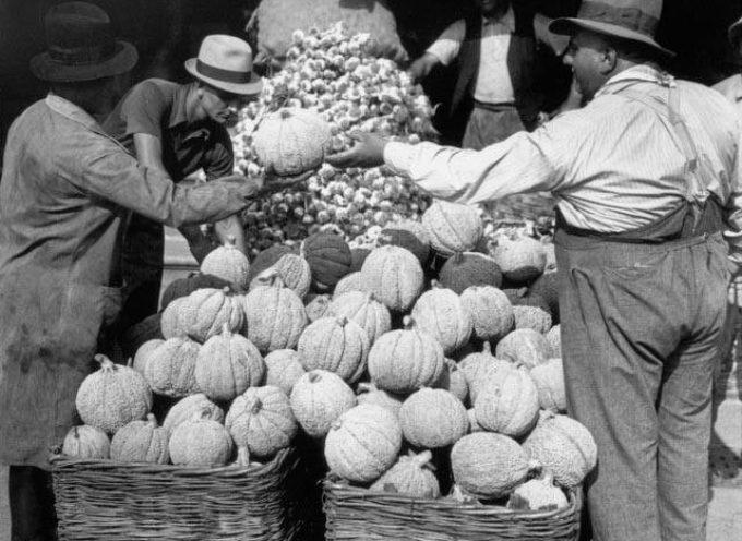 Se al mercato le troviamo a buon prezzo, facciamo provvista di zucche: