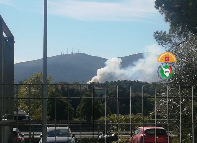 In fiamme una pineta a Sant'Andrea di Compito a Lucca