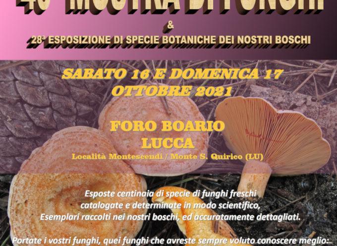 """40^ Mostra Micologica del Gruppo Micologico """"M. Danesi"""" al Foro Boario"""