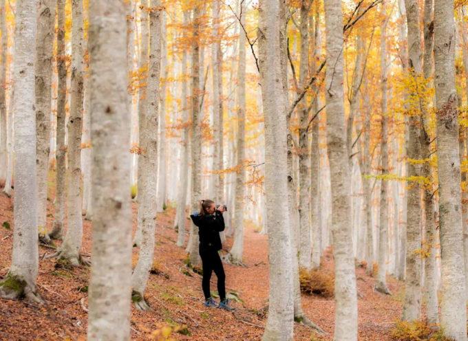 Autunno in Garfagnana: 5 itinerari TREKKING per godersi i colori del foliage