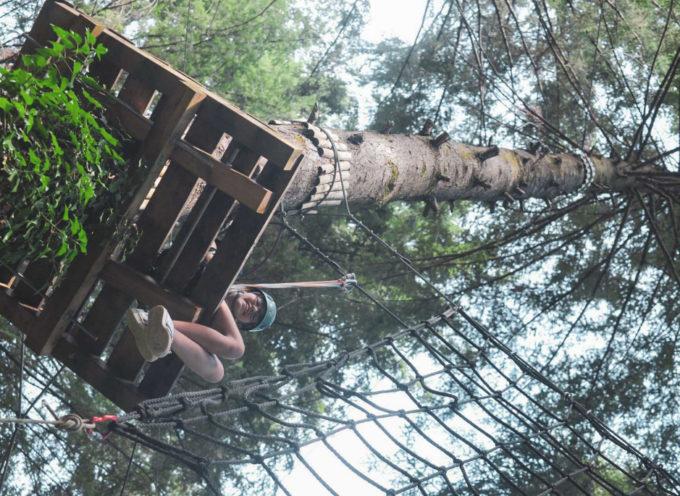 Parco avventura Selva del Buffardello, l'adrenalina è di casa a San Romano in Garfagnana