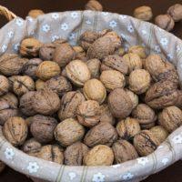 Come conservare le noci correttamente: consigli e trucchi